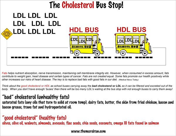 Understanding the difference between good cholesterol and bad cholesterol.