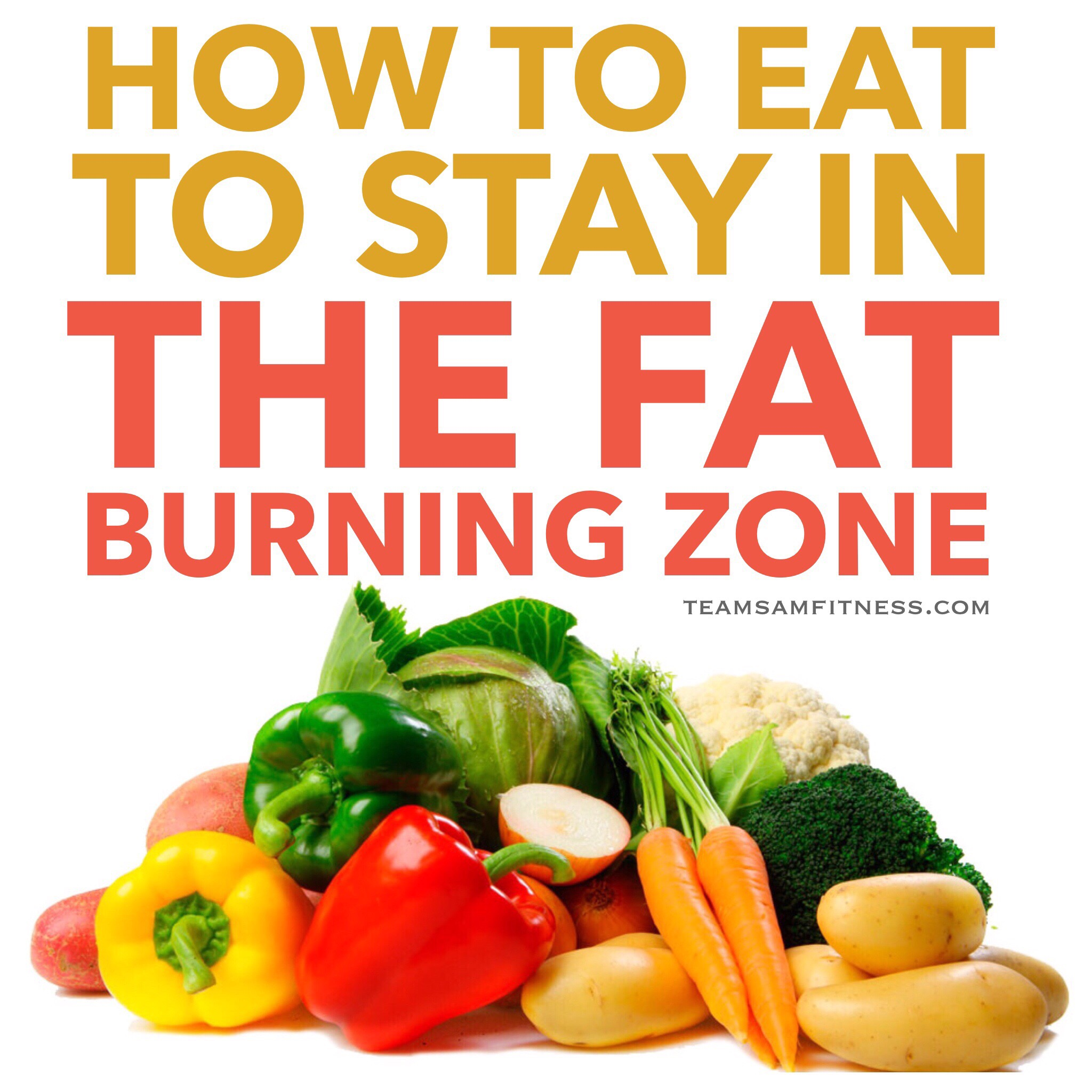 How to eat to stay in the Fat Burning Zone by teamsamfitness.com