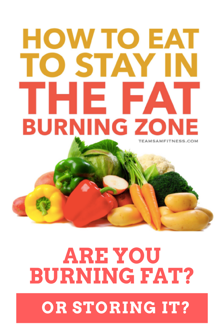How to eat to burn fat by TeamSam Fitness